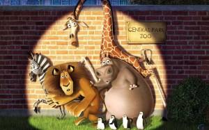 Aktivitas Pelatihan – Zoo