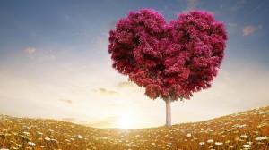 Kisah Pohon Apel dan Seorang Anak